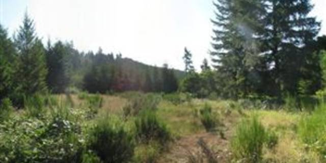 land for sale in springfield or