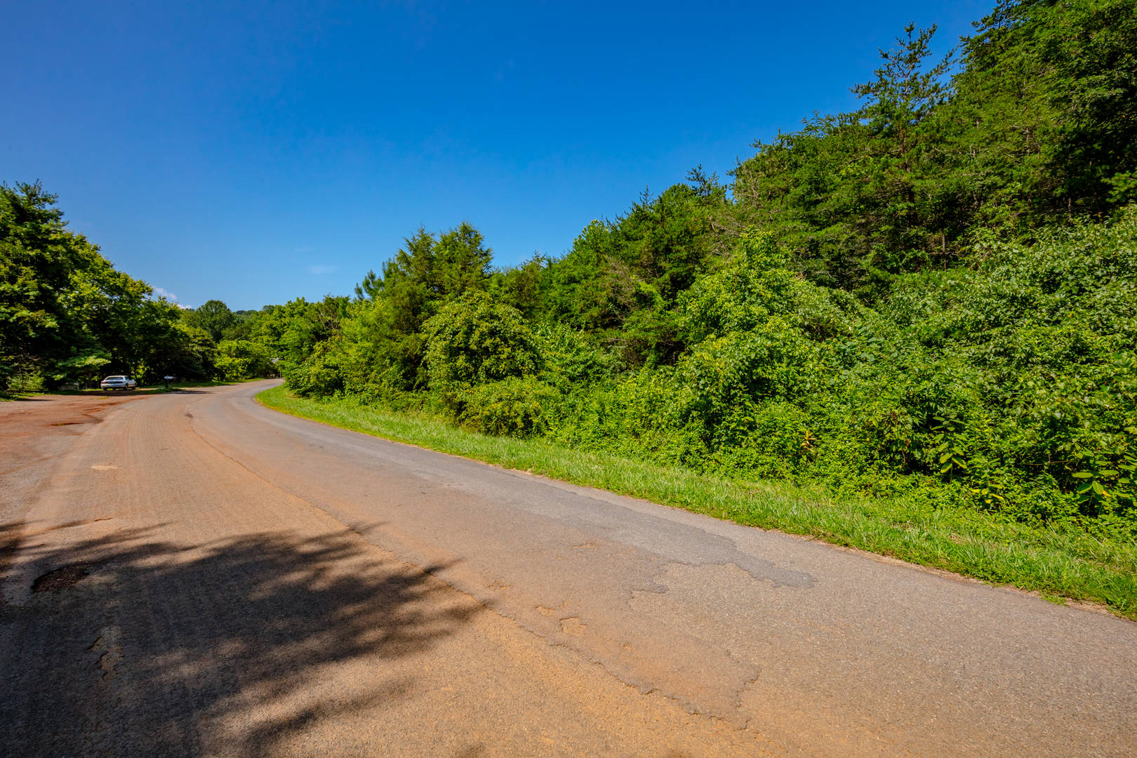 Lot 22 - Lone Ash Rd & Bald Meadow Lane Barren Springs, VA 24313