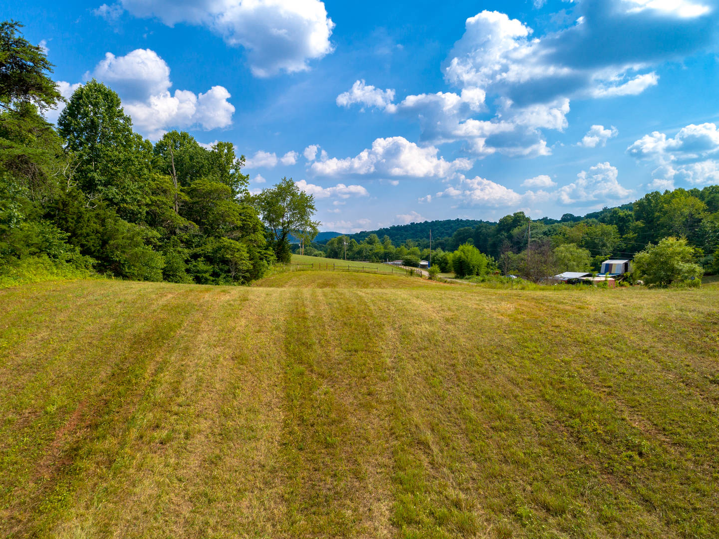 Lot 12 - Lone Ash Rd & Bald Meadow Ln Barren Springs, VA 24313