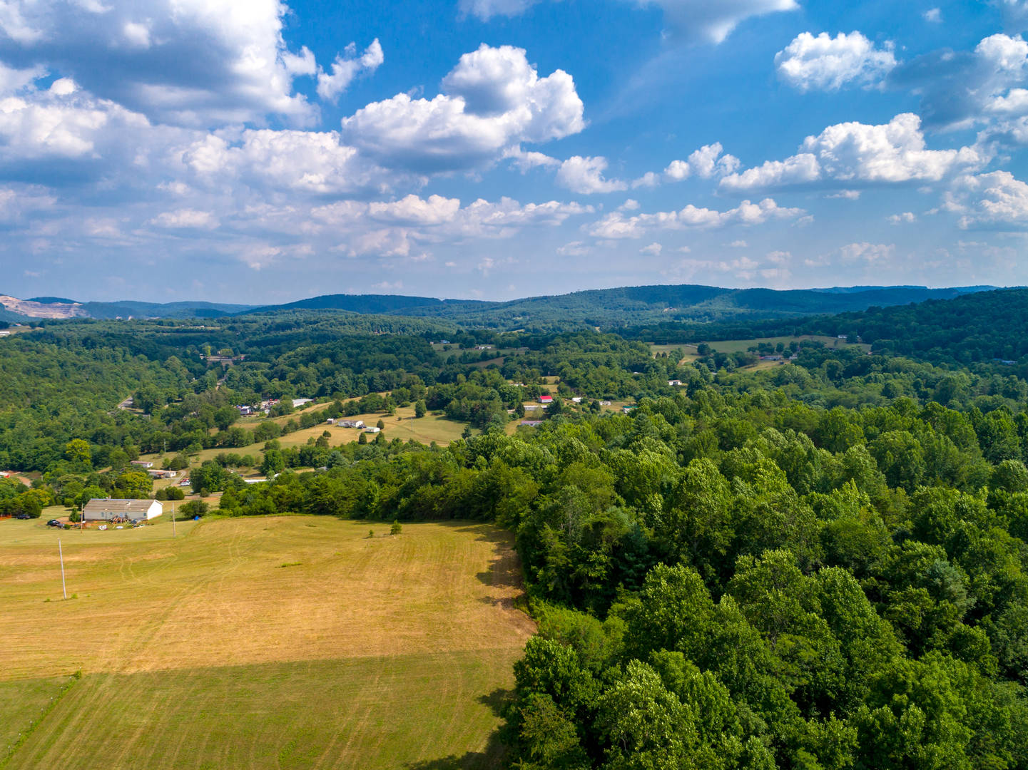 Lot 13 - Lone Ash Rd & Bald Meadow Lane Barren Springs, VA 24313