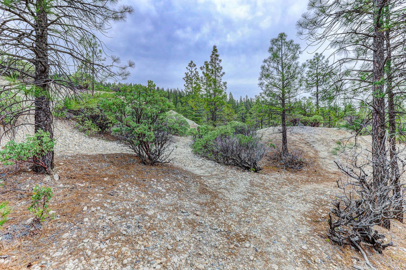 13676 Sailor Flat Road Nevada City, CA 95959