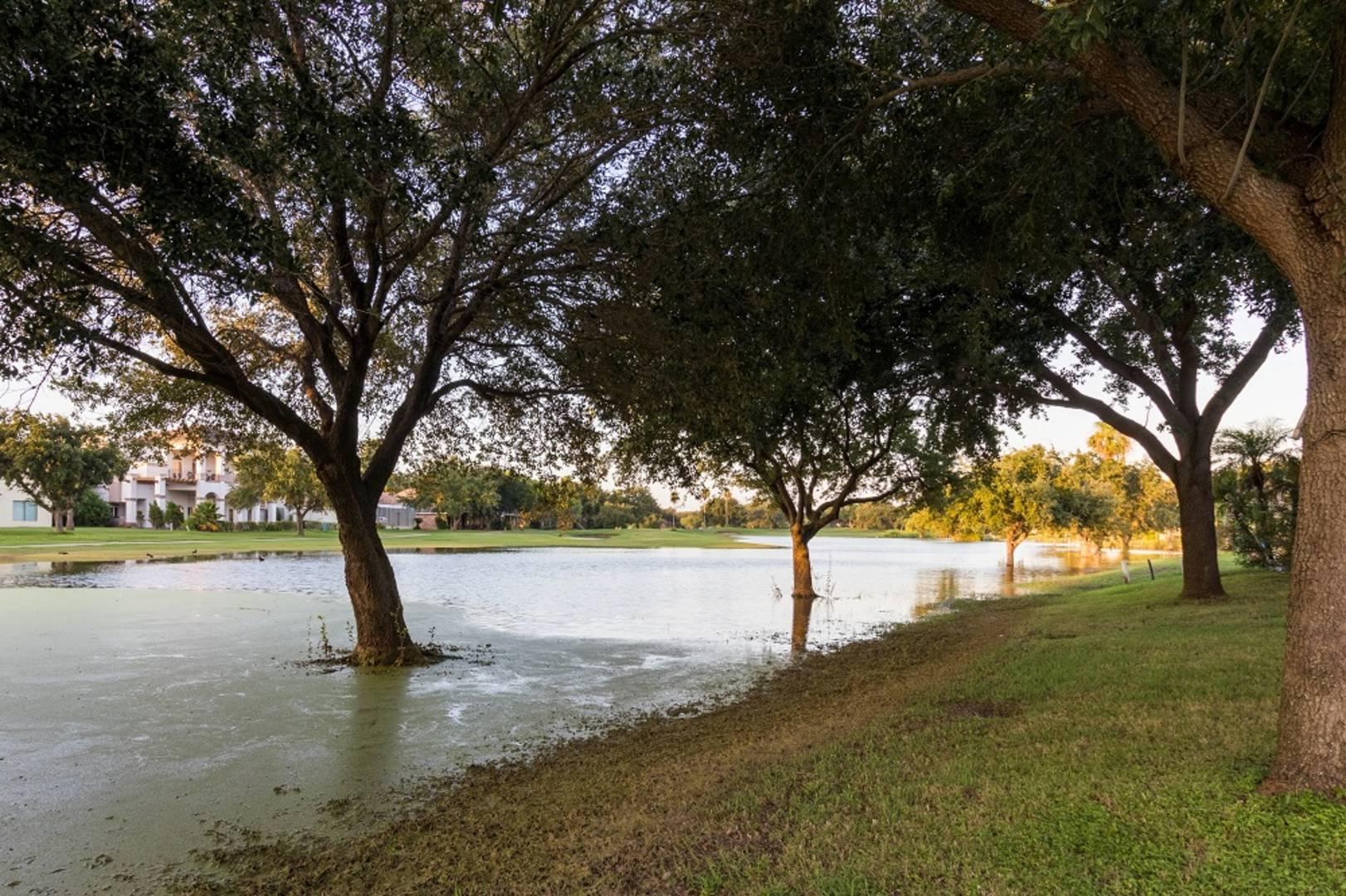 906 Rio Grande Drive Mission, TX 78572