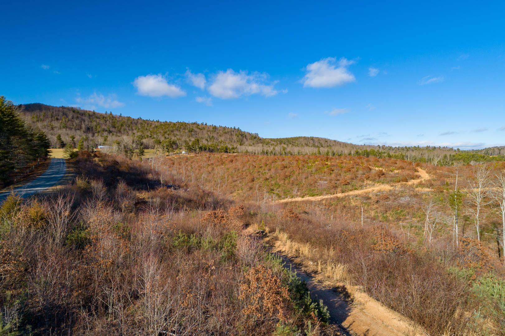 96 Acres Scratch Gravel Road Ivanhoe, VA 24350