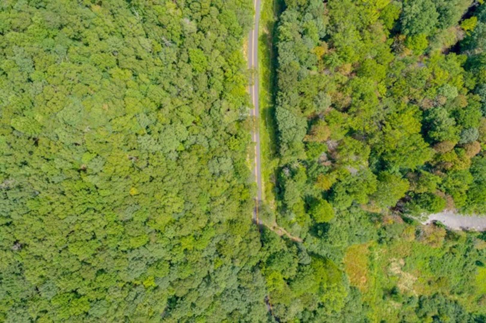 Lot 13C Grapefield Road Bastian, VA 24314