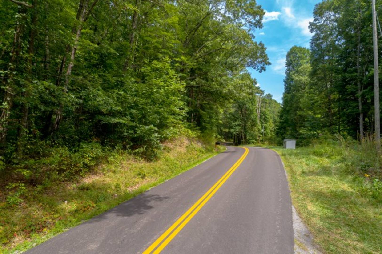 Lot 13C Grapefield Road Bastian, VA 24314