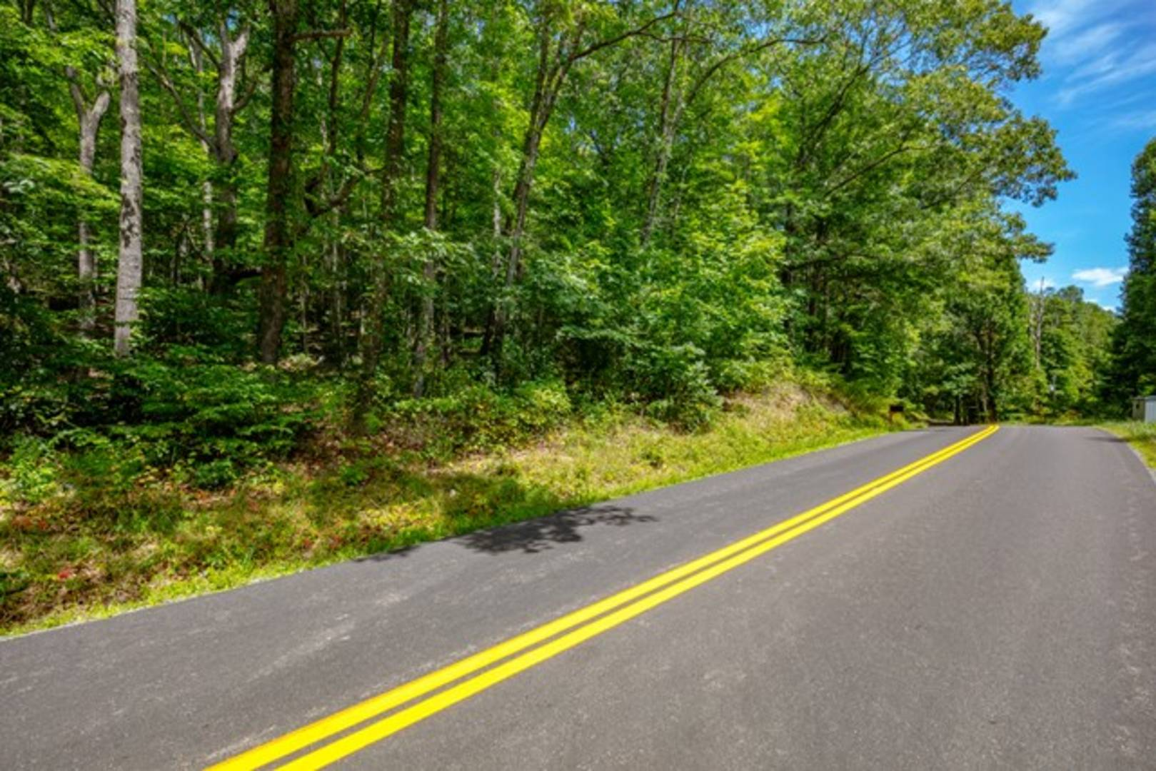 Lot 13B Grapefield Road  Bastian, VA 24314