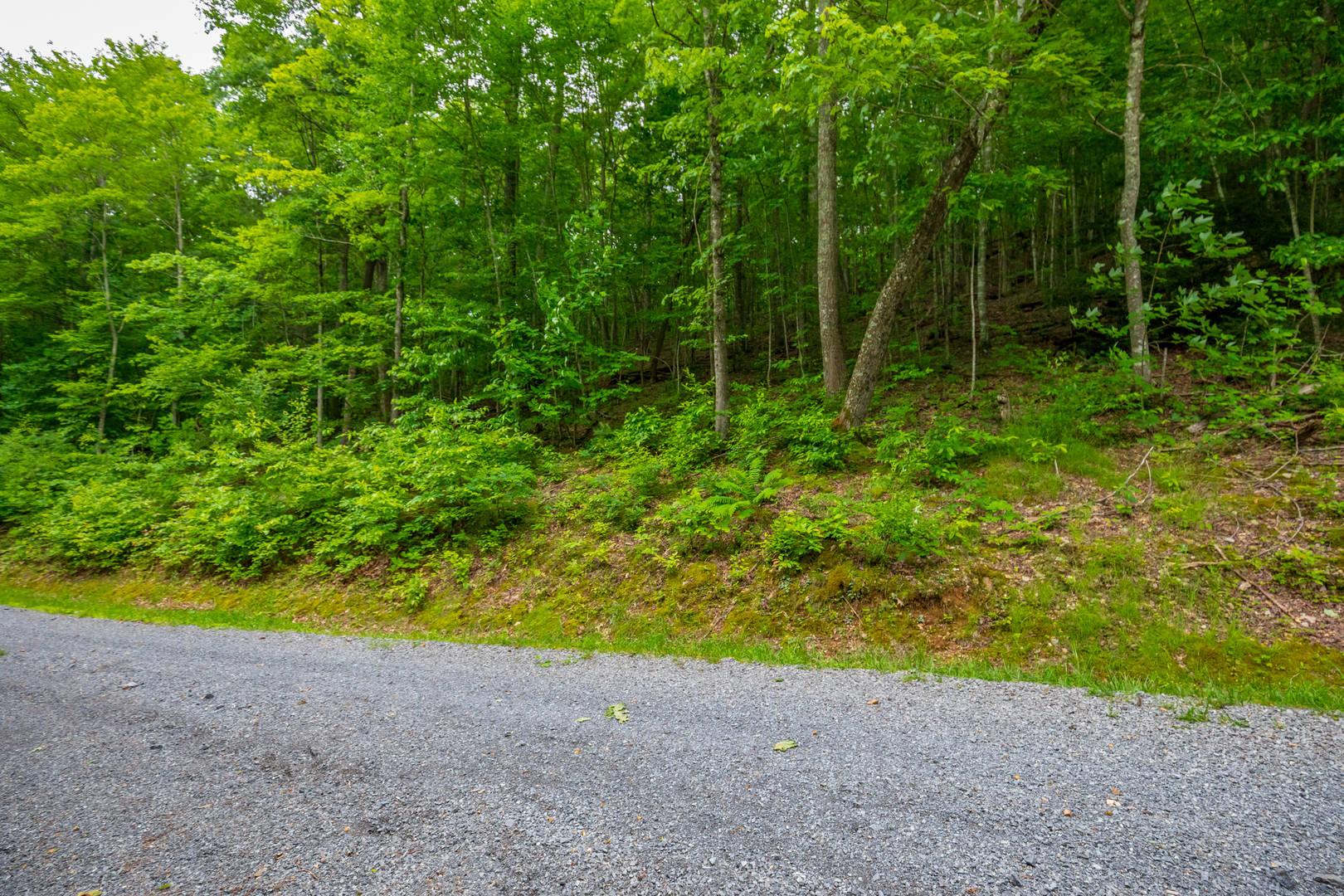 Lot 21 Fox Hollow Drive Bastian, VA 24314