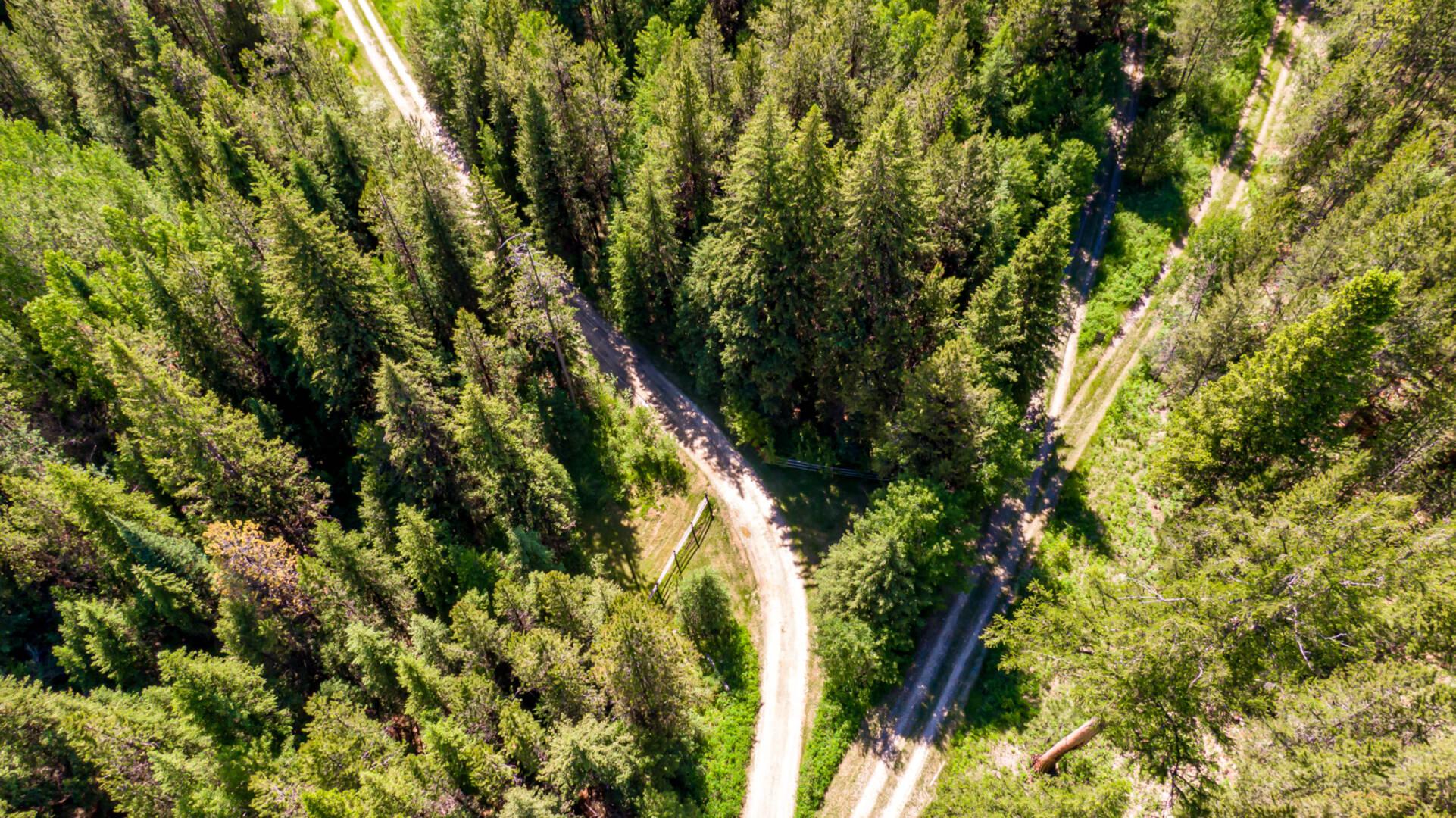 1985 Lower Lost Prairie Road Marion, MT 59925